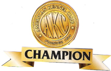 VIEW OUR AKC CHAMPIONS